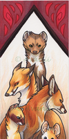 Bookmark: Fire by Avanii