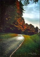 Autumn Road by WojciechDziadosz