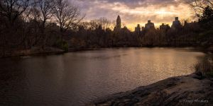 The Lake - Central Park by Tomoji-ized