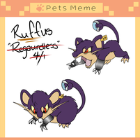 PKMNA - Ruffus the Ratatta by BehindClosedEyes00