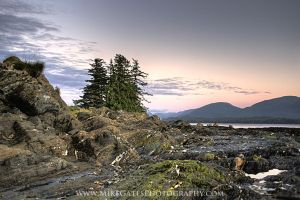 Bugge Beach Evening by Muskeg