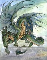 Deep Forest Dragon by rachaelm5