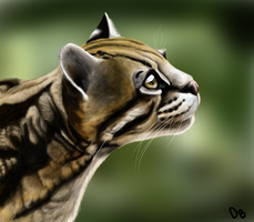Ocelot by PineapplesHaveFeet