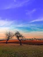Trees, sunset, clouds, panorama and village by patrickjobst