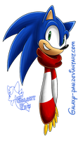 Sonic Scarf~! by faster-by-choice