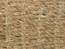 Texture: Wicker 001 by VicariousStock
