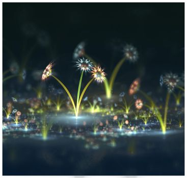 Water Flowers by daelly