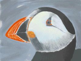 Puffin by VATalbot
