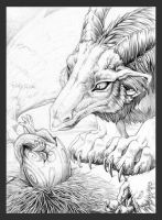 Hatching by hibbary