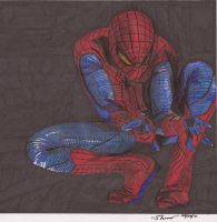 The Amazing Spider-Man 2012 by TakuaNui
