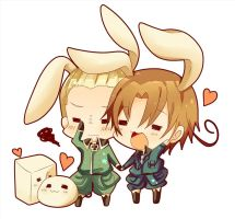 the 2 hetalian bunnies by buttercakes14