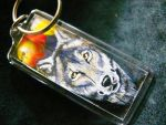 Feather Painting Keychain 42 by dittin03