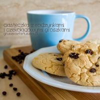 chocolate chip and raisins cookies by Pokakulka