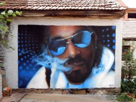 Snoop Dogg graffiti portrait by mechanism0022