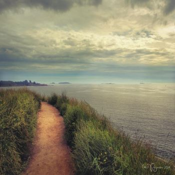 Path to the sea by Pajunen