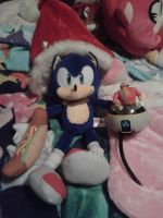 Sonic And Eggman Plush And Toy by DrEggmanSticksFan101