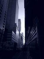 Standing In The Shadows Of New York City by Brooklyn47