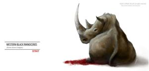 WESTERN BLACK RHINO EXTINCT by chicopixel