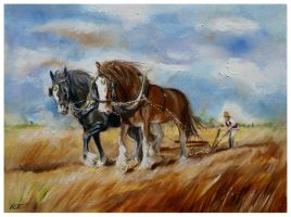Ploughing by Bisat
