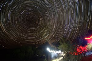 My first attempt at star trails by dottys-friend