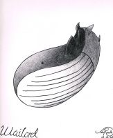 Wailord by johnrenelle
