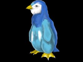 Realistic Piplup-Colored by drgknot