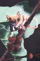 Observant Mouse by Gotrea