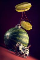 Untitled with watermelon by seenew
