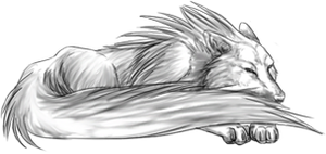 Curled Sleeping Wolf Pose (FREE) by BluuWynter