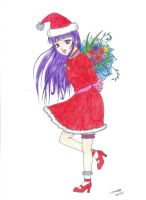 Extra Merry Christmas by Vallia