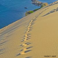 I will find my way by Nile-Paparazzi