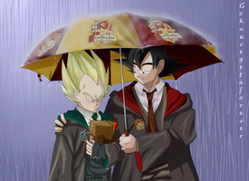 Love at Hogwarts by gokuxvegetaforever