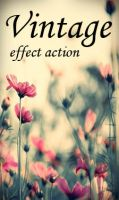 Vintage Effect Action by Irridian