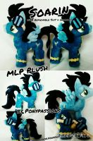 MLP Soarin with Accessories Plush by Ponypassions by ponypassions