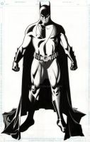Gotham's defender by BroHawk