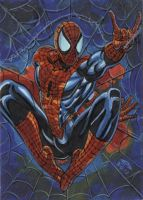 Spider Man sketch card 2012A by AHochrein2010