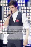 #5 One Direction Facts by Misuuh