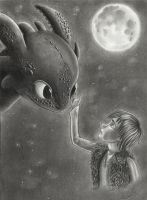 How to train your dragon by Cri-Kee
