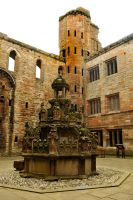 Linlithgow Palace 3 by wildplaces