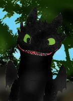 HTTYD I like you when you give me cookies by Selinelle
