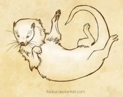 Otter by Fladius