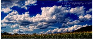summer sky by Lk-Photography