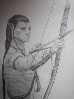 Jakes' Archery Lesson by Isisneferet