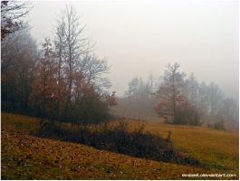 Last Day Of November by eMBeeL