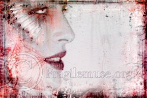 - Butterfly Kissed by fragilemuse-org