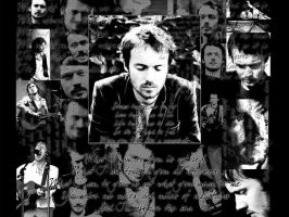 Damien Rice by GospodarSamoce