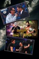 Sting vs Bobby Roode by 2009abc