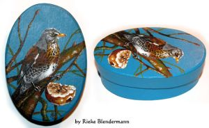 Painted Bird Box Fieldfare by rieke-b