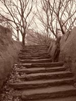 the lone stairs by Mazaskaneko