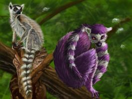 Realism vs Comic Lemur by Leia1987